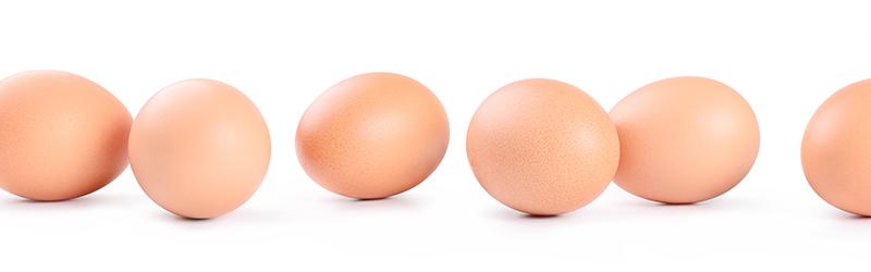 Monsieur le Ministre, et si vous alliez vous faire cuire un œuf ?