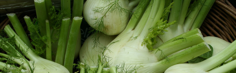 Le légume qui met de bonne humeur…(mais pas seulement)