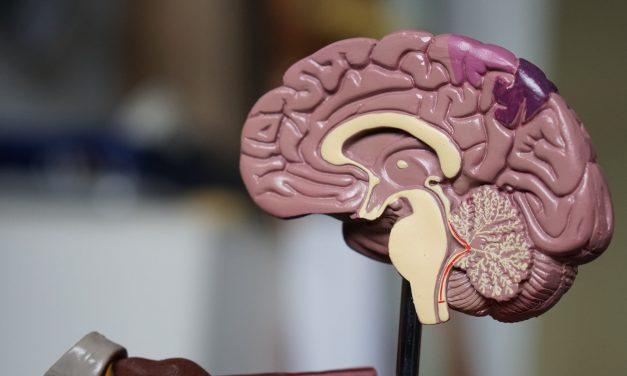 Guéri d'Alzheimer à 82 ans…grâce à un drôle de «cadeau»de son épouse!